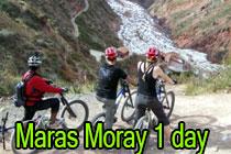 Lares Mountain Bike