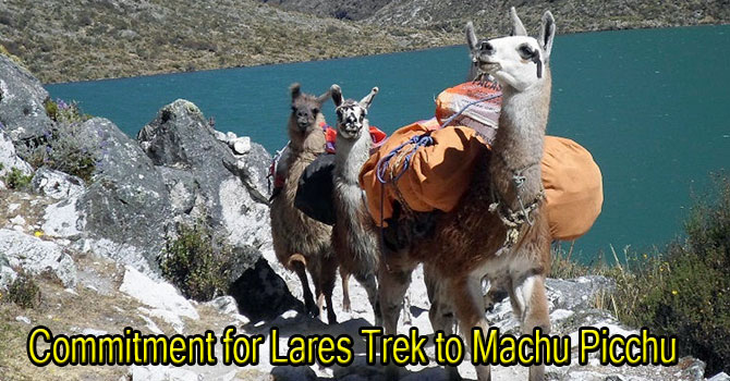 Our Commitment for Lares Trek Services